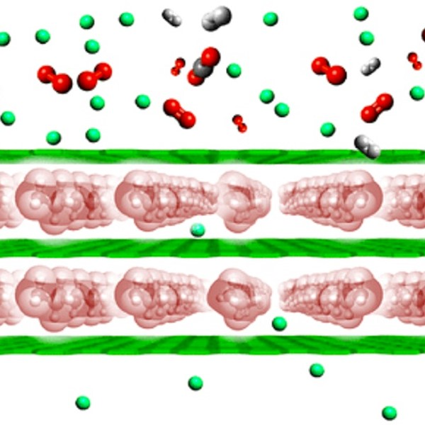 Schematic representation of the material structure with PEI molecules, constrained between graphene oxide nanosheets. Credit: ACS