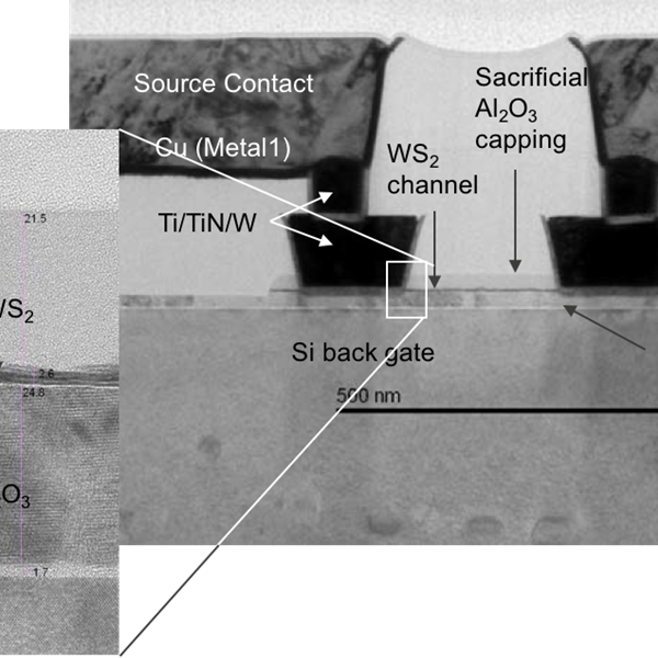 TEM image showing 300mm integration of two-dimentional few-layer WS2 channel-based MOSFETs using standard production tools. Credit: Tom Schram, imec.