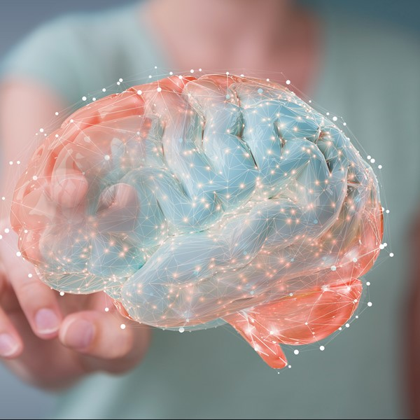 Graphene Flagship spin-off INBRAIN raises investment of over €14M
